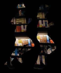 libros a la carrera 2