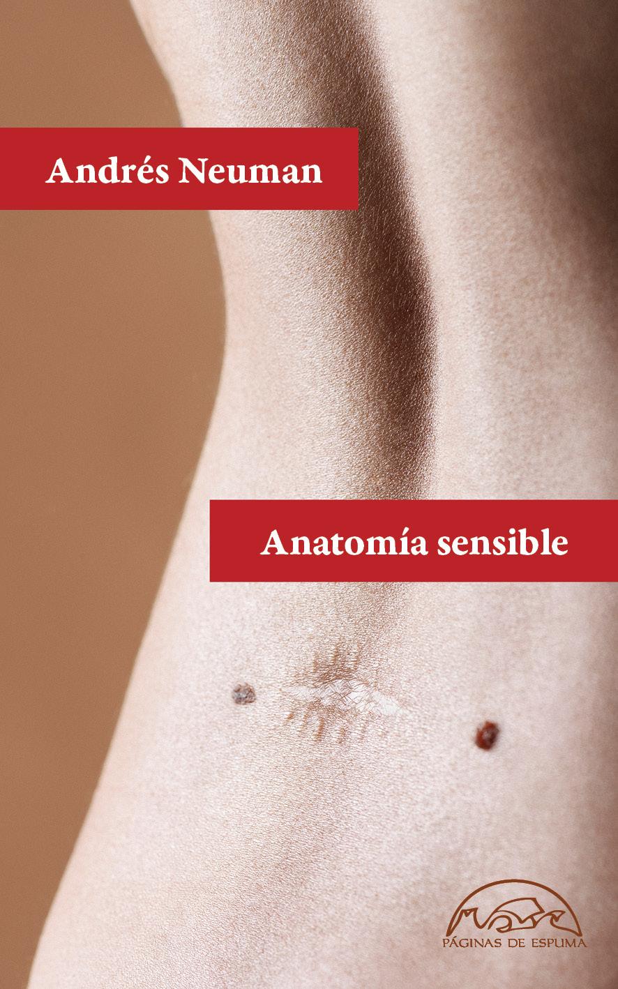 alberti Anatomía sensible